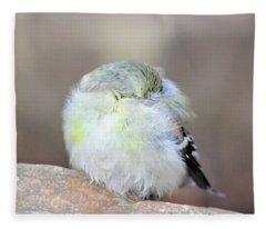 Little Sleeping Goldfinch Fleece Blanket