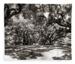 Live Oak Allee Infrared Fleece Blanket