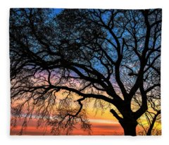 Live Oak Under A Rainbow Sky Fleece Blanket