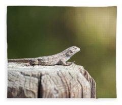 Lizard On Fence Post Fleece Blanket