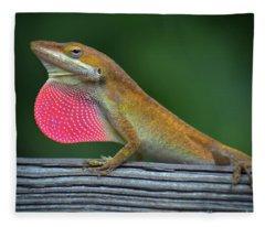 Lizardry Fleece Blanket