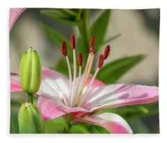 Lollipop Lily 2018-1 Fleece Blanket