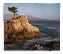 lone Cypress Tree Fleece Blanket