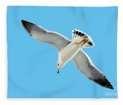 Lone Florida Seagull On Beach Patrol 727b Fleece Blanket