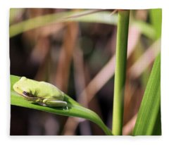 Lone Tree Frog Fleece Blanket