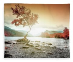 Lone Tree Wales Llyn Pardarn, Llanberis Fleece Blanket