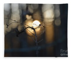 Lonely Tree Branch With Bokeh Love -georgia Fleece Blanket