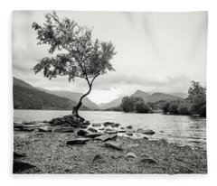 Loney Tree Snowdonia Wales Journey Of Mountains Fleece Blanket