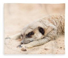 Long Day In Meerkat Village Fleece Blanket