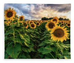 Long Island Sunflowers  Fleece Blanket