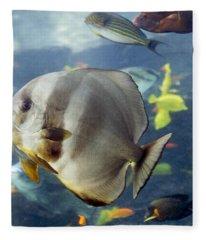 Longfin Batfish Fleece Blanket