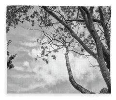 Look Up Into The Sky Fleece Blanket