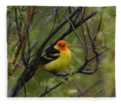 Looking At You - Western Tanager Fleece Blanket