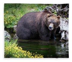 Looking For Dinner Fleece Blanket