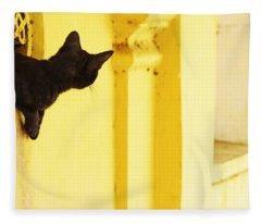 Looking For Mouse Fleece Blanket