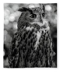 Looking Owl  Fleece Blanket