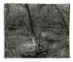 Loop Road Swamp #3 Fleece Blanket