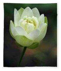 Lotus Blooming Fleece Blanket