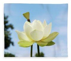 Lotus Debbie Gibson Flower Fleece Blanket