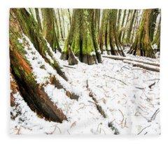 Louisiana Snowfall Fleece Blanket