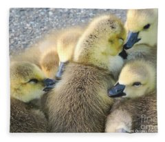 Love Is All Around Fleece Blanket