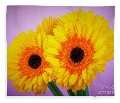 Lovely And Beautiful - Gerbera Daisies Fleece Blanket