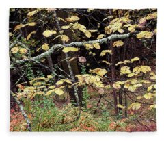 Lovely Autumn Witch Hazel -   Fleece Blanket