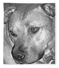 Lovely Dog Fleece Blanket