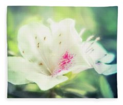 Designs Similar to Lovely In White by Terry Davis