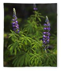 Lupine Fleece Blanket
