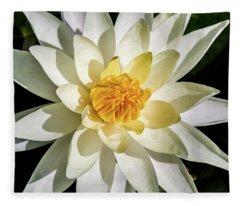 Macro Water Lily Fleece Blanket