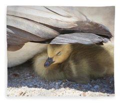 Gosling Photographs Fleece Blankets