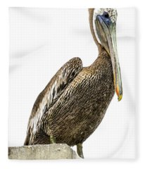 Majestic Gulf Shores Pelican 1071a Fleece Blanket