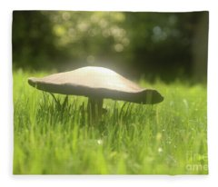Magic Mushroom In Early Morning Fleece Blanket