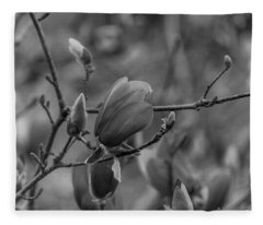 Magnolia Bw Blooms Buds Branches Fleece Blanket