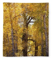 Majestic Aspens Fleece Blanket