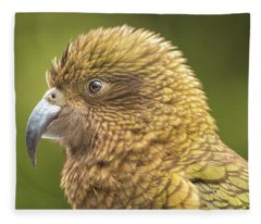 Kea Portrait Fleece Blanket