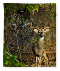 Majestic Whitetail Fleece Blanket