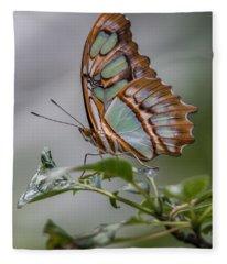 Malachite Butterfly Profile Fleece Blanket