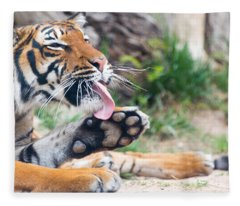 Malayan Tiger Grooming Fleece Blanket