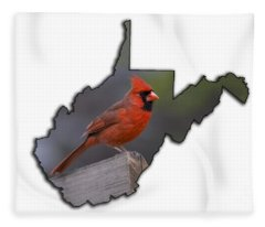 Male Cardinal Perch  Fleece Blanket