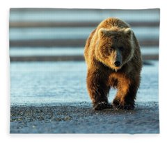 Male Grizzly At Low Tide Fleece Blanket
