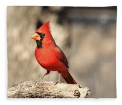 Male Northern Cardinal  Fleece Blanket
