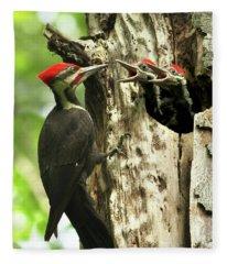 Male Pileated Woodpecker At Nest Fleece Blanket