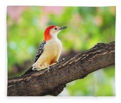 Male Red-bellied Woodpecker Fleece Blanket