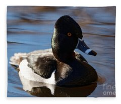Male Ring-necked Duck Fleece Blanket