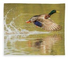 Mallard Duck 1952-112017-1cr Fleece Blanket