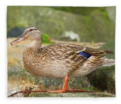 Mallard Duck Fleece Blanket