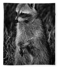 Mama Raccoon Fleece Blanket