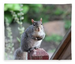 Mama Squirrel Fleece Blanket